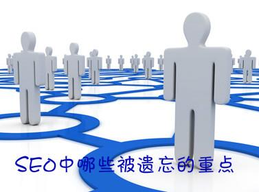 葫芦岛企业网站SEO中哪些被遗忘的重点